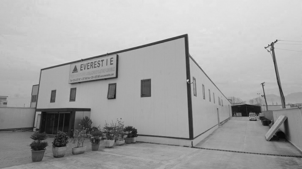 Everest IE was founded